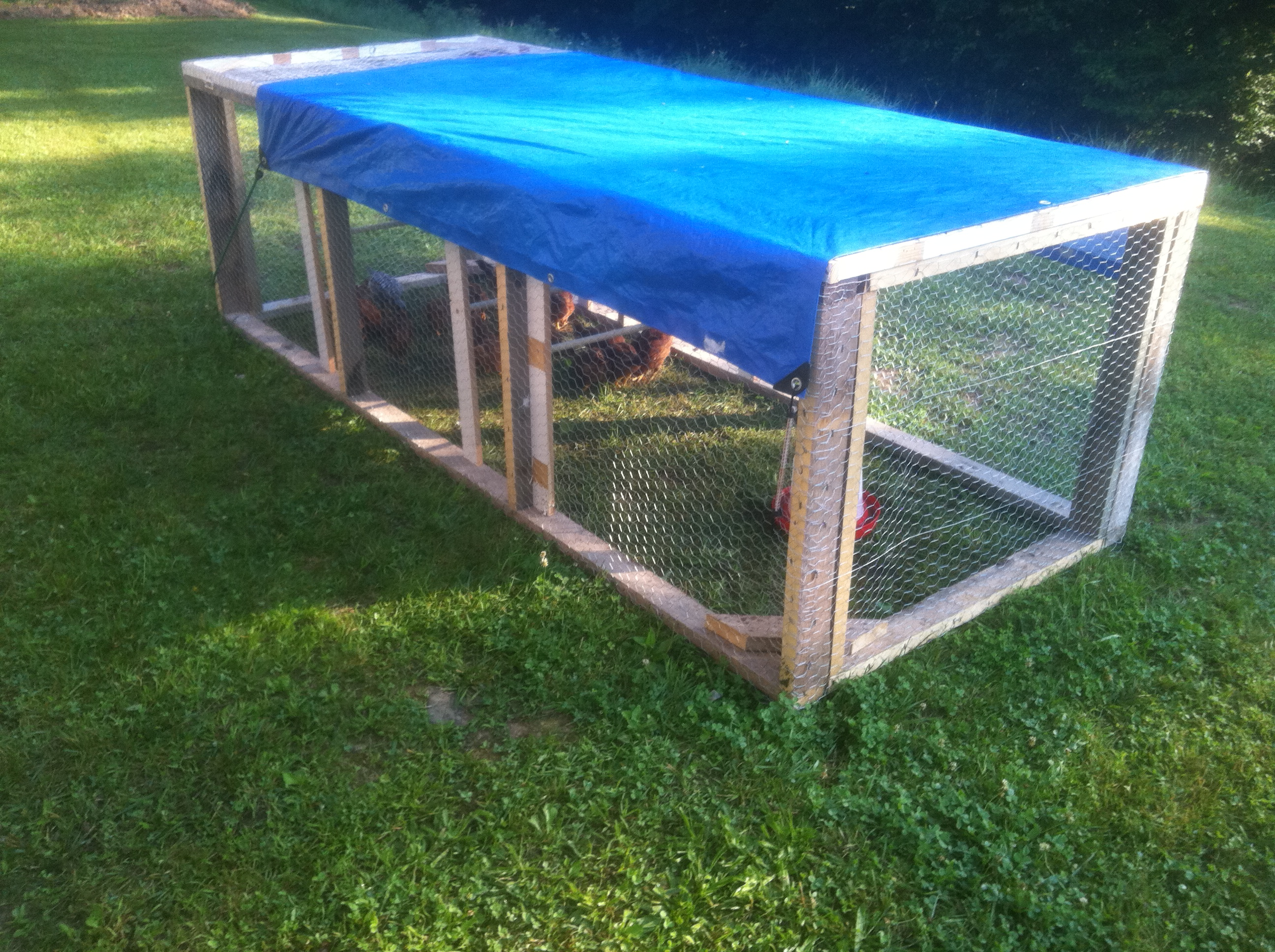 Coop options for chickens - the Chicken Tractor - Red Tool
